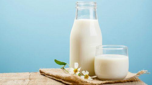 giấc mơ thấy sữa bò báo hiệu bạn có một cơ thể khỏe mạnh