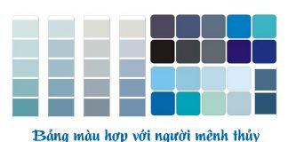 Bảng màu sắc cho những người thuộc mạng Thủy