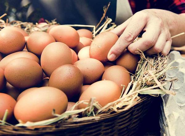Giải mã chi tiết ý nghĩa của giấc mơ thấy trứng