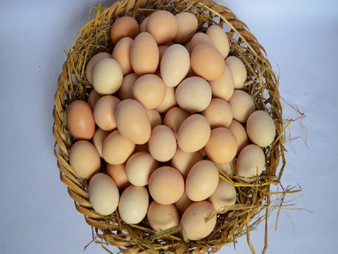 Giải mã chi tiết giấc mơ thấy trứng là điềm báo gì?
