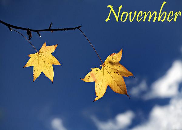 Tháng 11 may mắn với người có ngày sinh dương lịch nào?