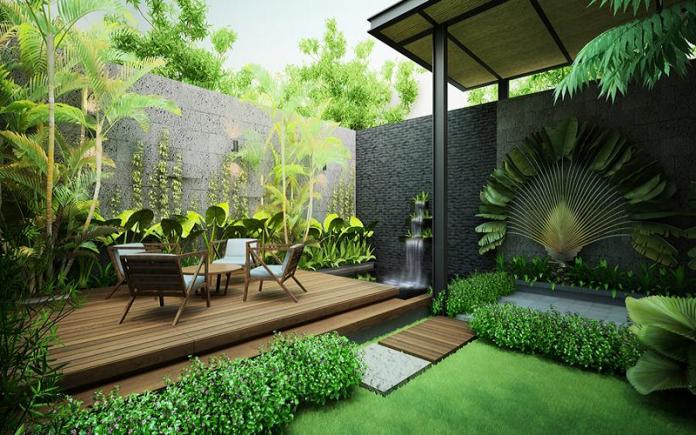 Những lưu ý khi trồng cây phong thủy trong vườn nhà