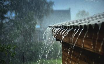 Mơ thấy mưa là điềm lành hay dữ?